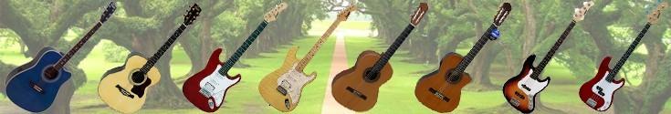 Guitarras - Bajos